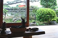 座敷からの三輪山や景行天皇陵の眺めは長閑そう
